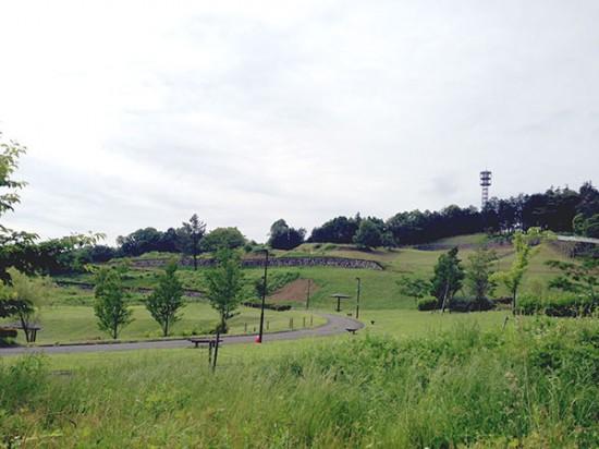 クロスバイクで行ったおだわら諏訪の原公園の写真
