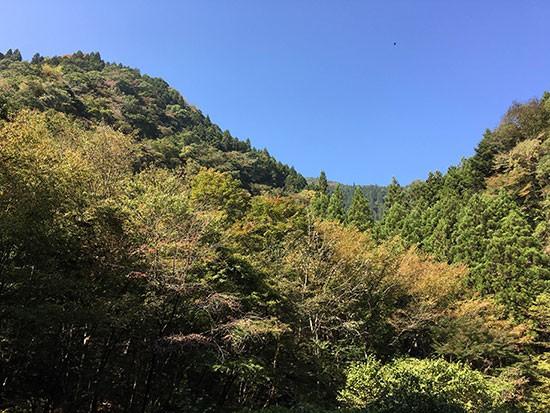 10月の檜原村