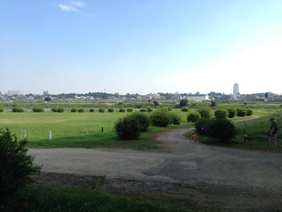 多摩川サイクリングロードの二子玉川周辺の写真