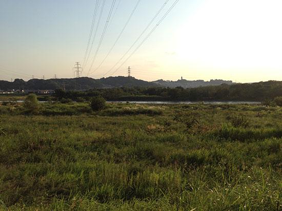 ロードバイクで多摩川サイクリングロードに行ったときの府中あたりの河川敷の画像