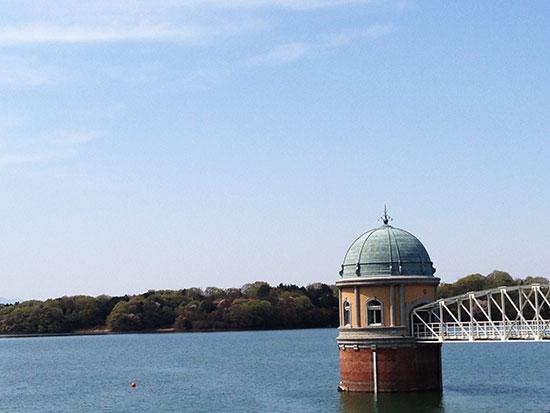 多摩湖の写真